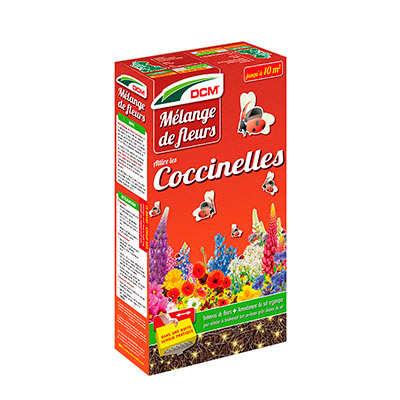 Mélange de fleurs Coccinelles DCM