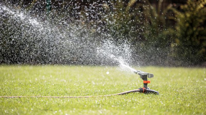 Rasenbewässerung 1 bis 2 mal pro Woche
