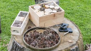 Ein Insektenhotel selber machen - Step 1