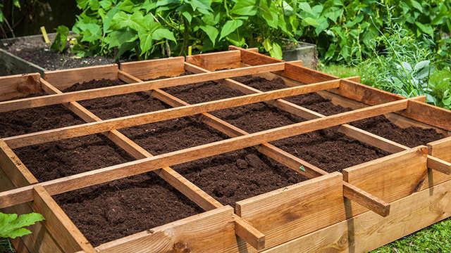 Le jardinage en carrés