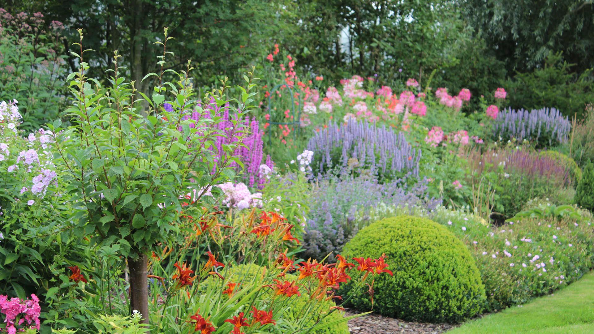 Je border bemesten voor een langere gezonde groei en bloei
