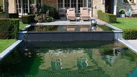 L'entretien des étangs-piscines