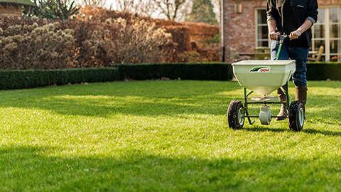 Rasen richtig kalken