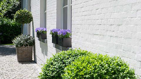 Regelmatig gieten van mijn bloembakken is een probleem. Hebben jullie een oplossing?
