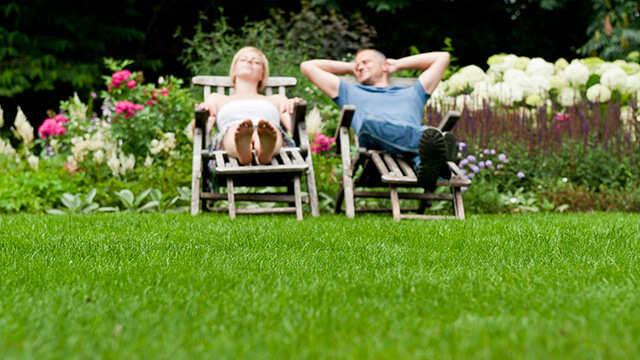 Les soins appropriés pour une pelouse en pleine forme!