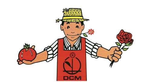 45 ans DCM
