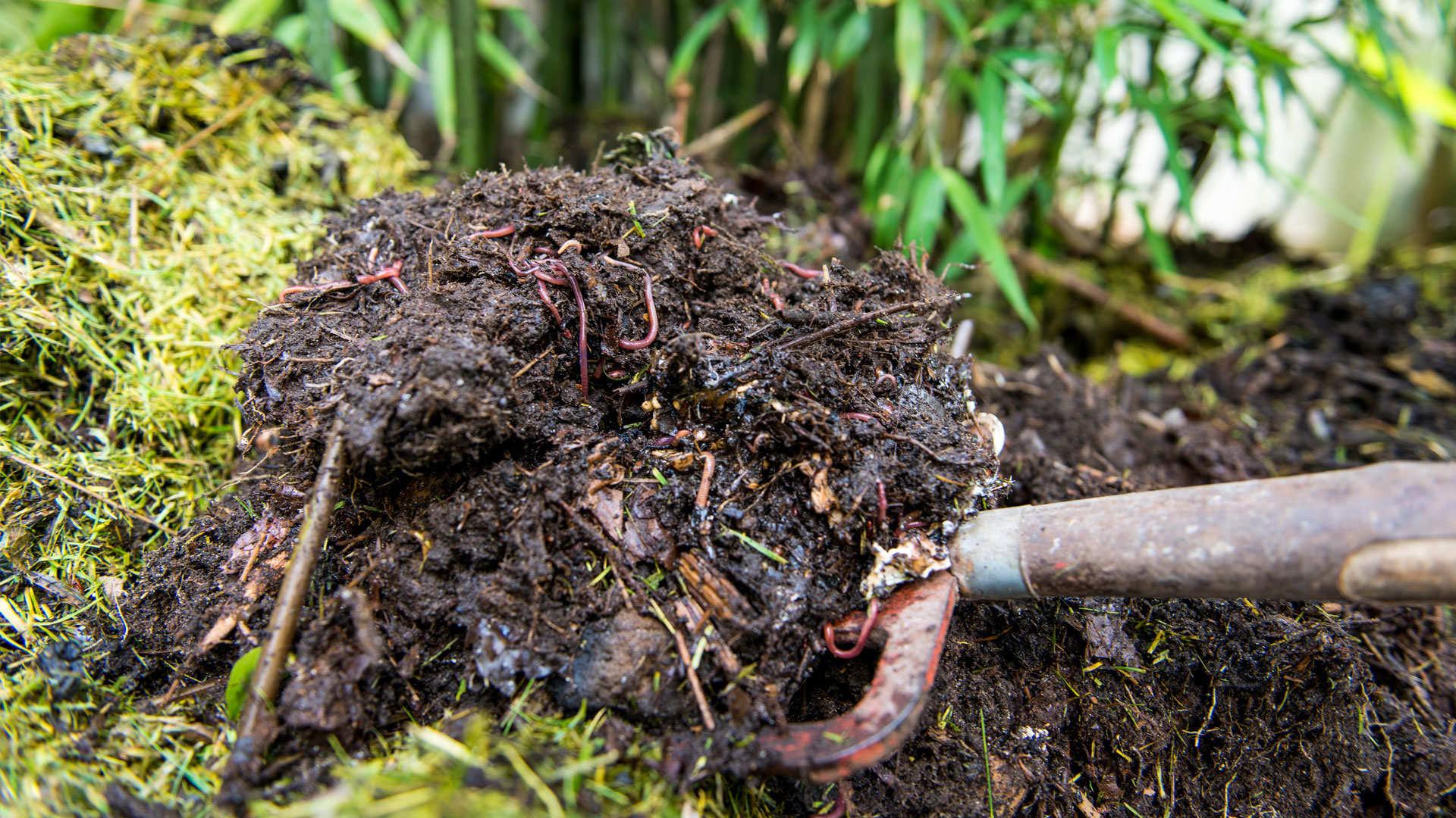 Natürlich Kompostieren