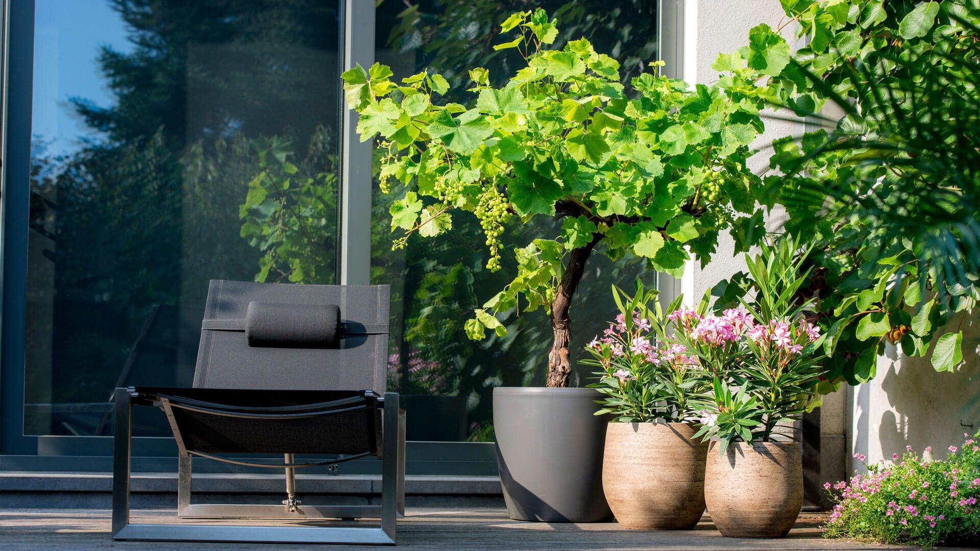 De hele zomer die heerlijke, zwoele, mediterrane sfeer op uw terras.