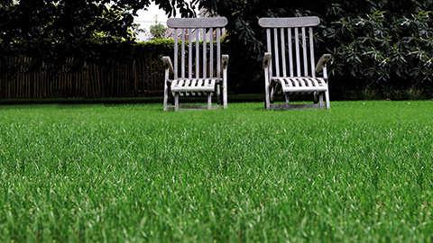 Een grasgroen onkruidvrij gazon in één beweging!