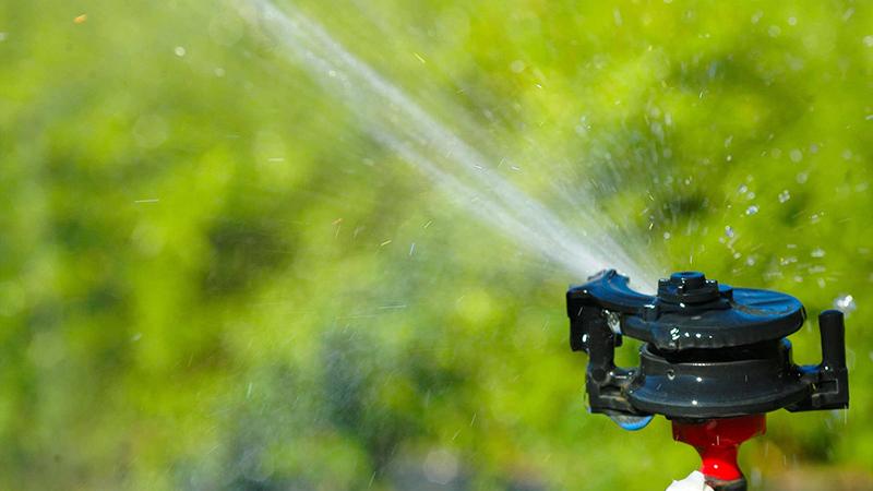 Die 4 wichtigsten Tipps für eine bedarfsgerechte Rasen-Bewässerung
