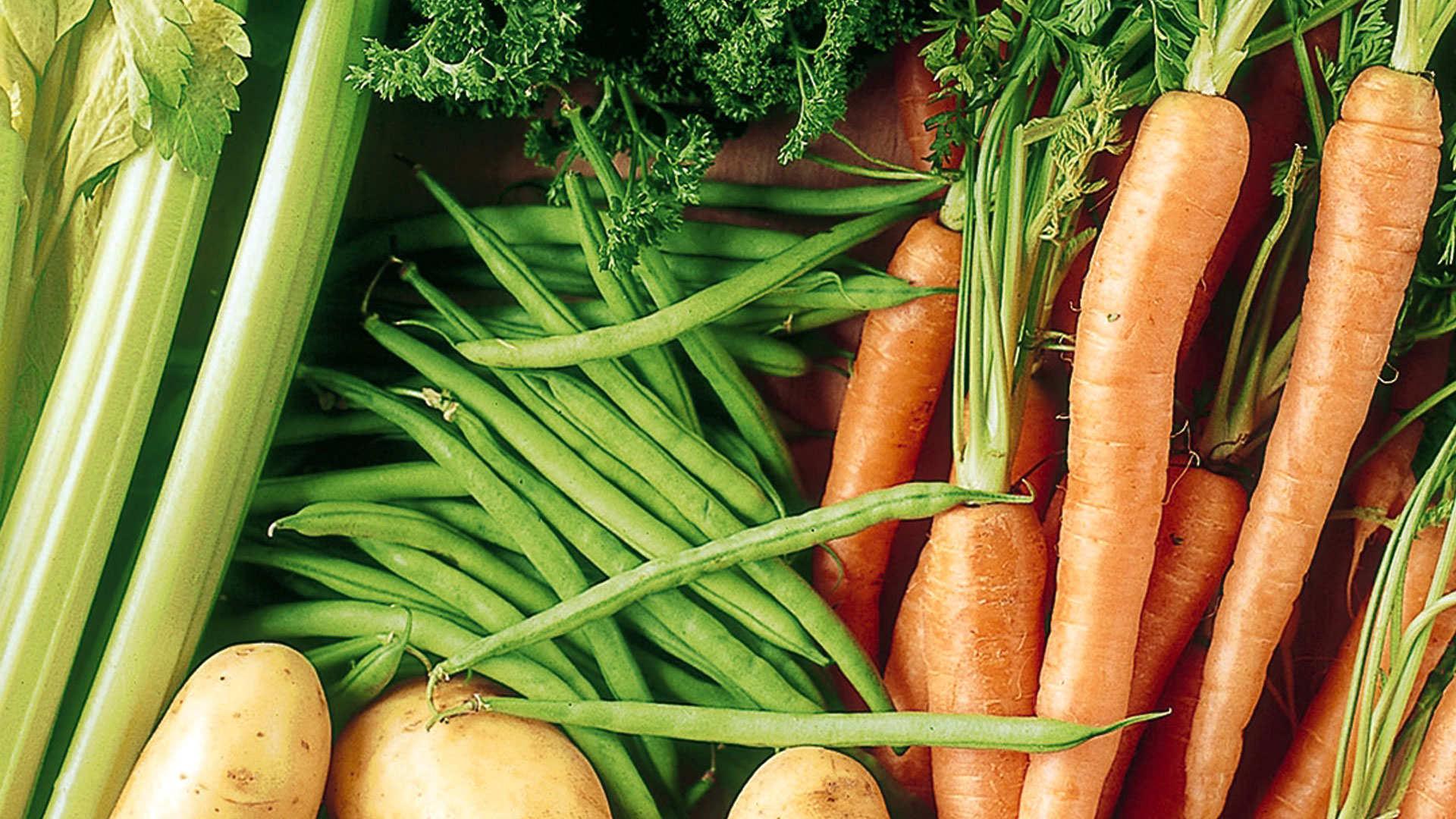 Die richtige Düngerwahl für den Obst- und Gemüsegarten