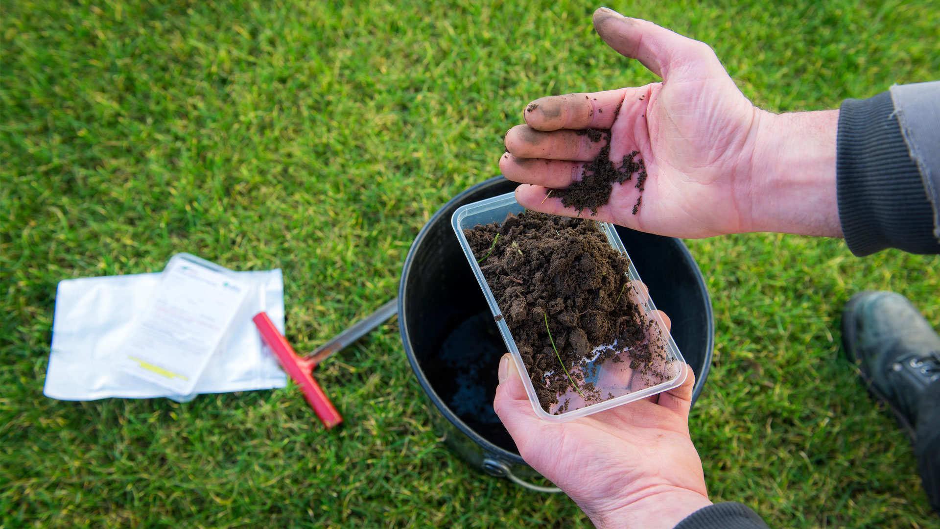 Het belang van een goede bodemvoorbereiding.