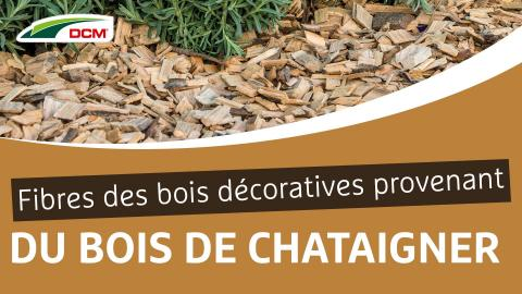 Fibres de bois décoratives provenant du bois de châtaignier - Castanea CoverChips DCM