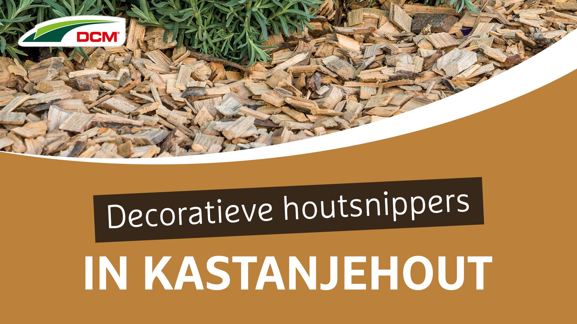Decoratieve houtsnippers van kastanjehout  - DCM Castanea CoverChips
