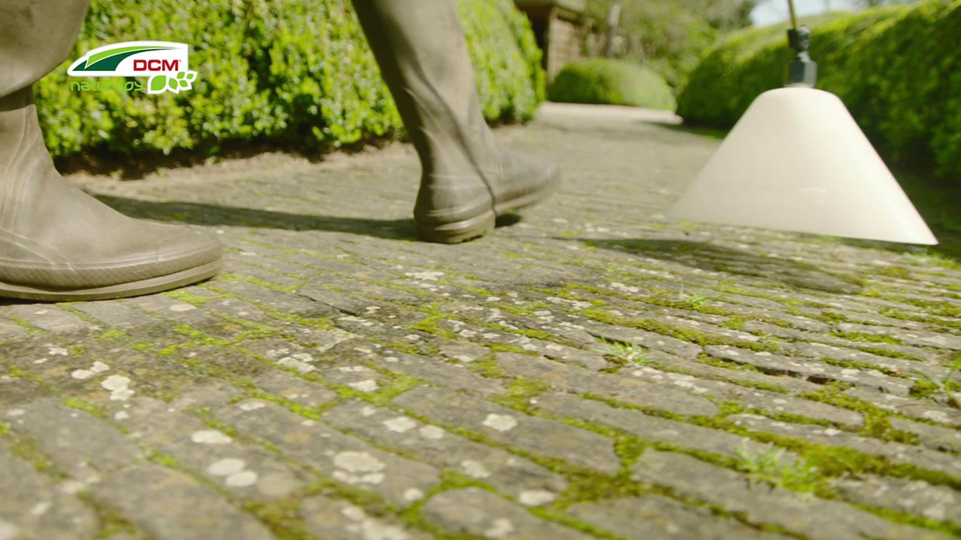 Mos en onkruid bestrijden in uw tuin