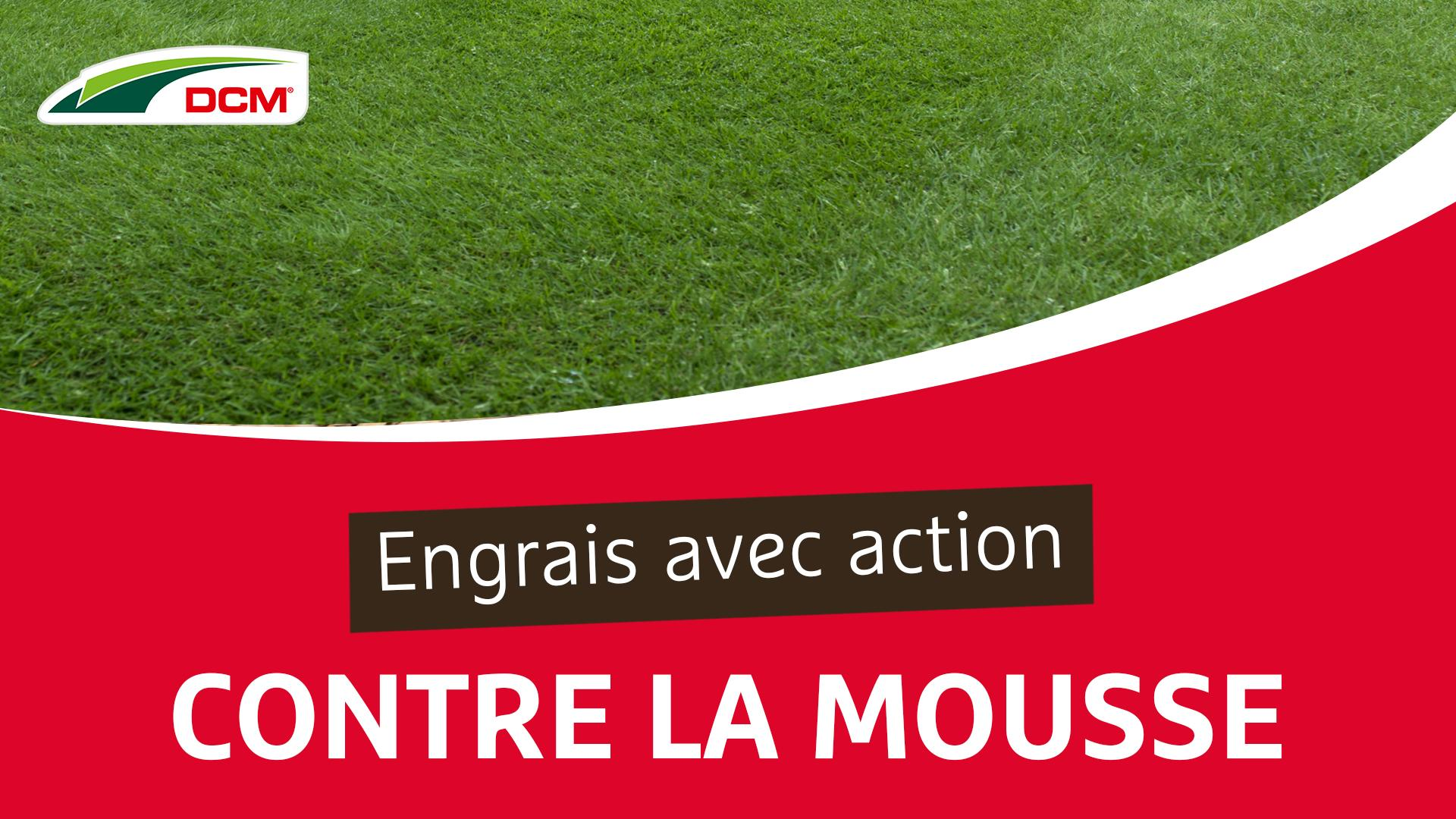 Engrais avec action contre la mousse - Gazon propre DCM