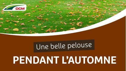 Une belle pelouse pendant l'automne - Engrais Pelouse Automne DCM