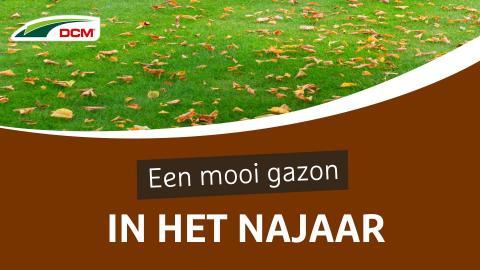 Mooie gazon in het najaar - DCM Gazonmeststof Najaar