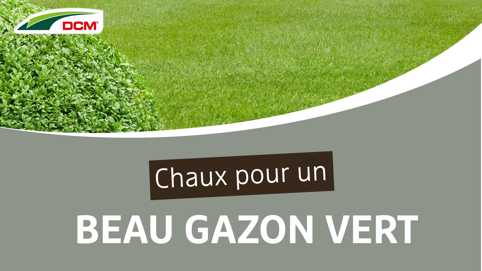Chaux pour un beau gazon vert - DCM Calcaire vert®