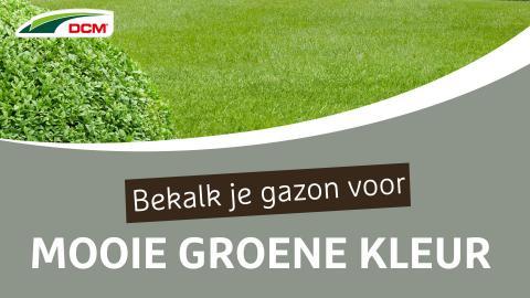 Bekalk je gazon voor een mooie groene kleur - DCM Groen-Kalk®
