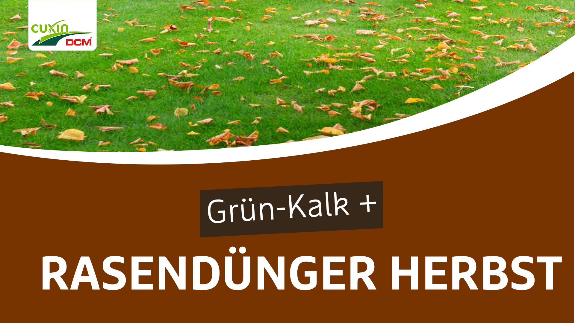 Rasendünger Herbst / Grün-kalk