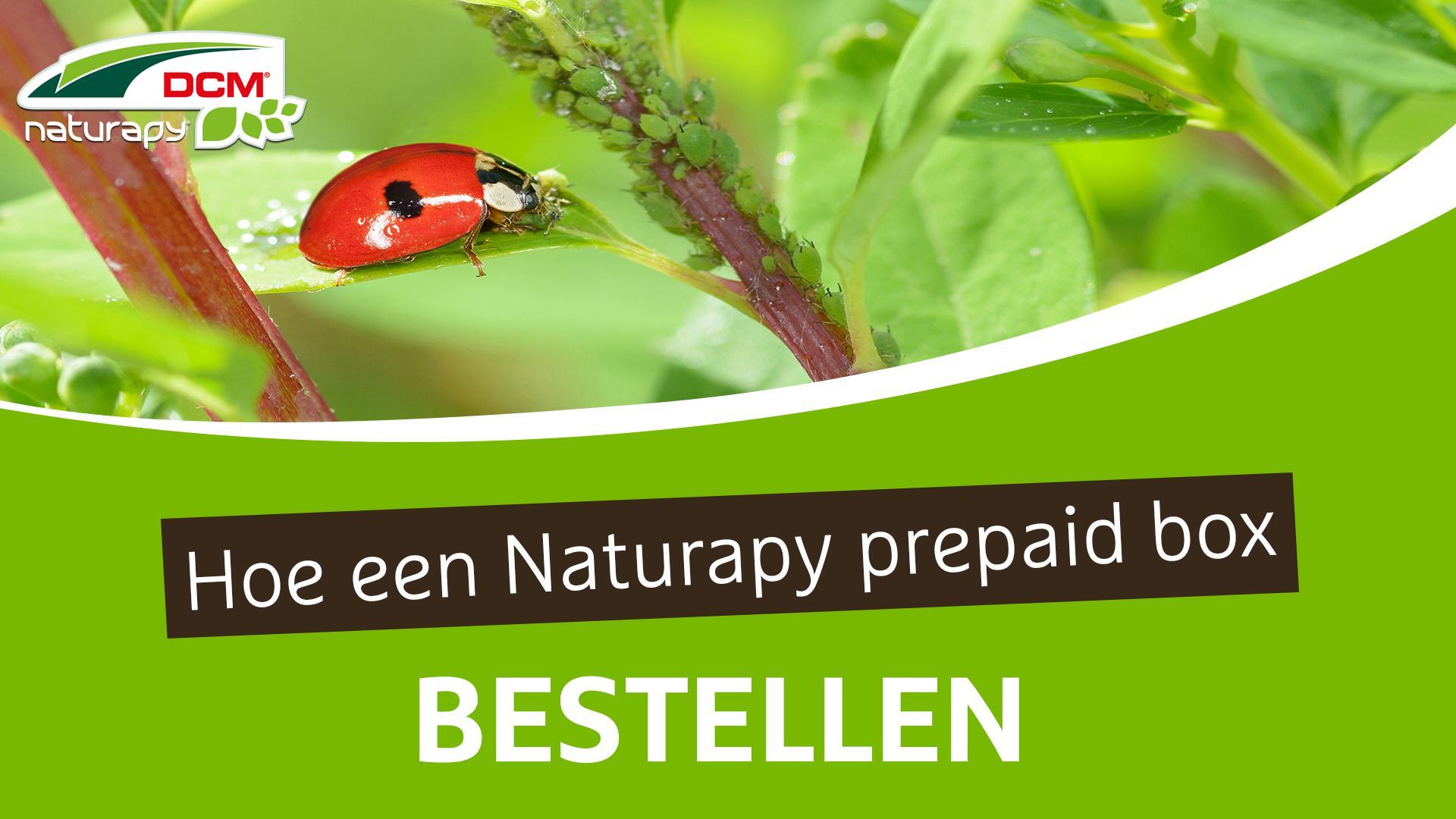 Hoe DCM Naturapy® prepaid box bestellen - DCM Naturapy®