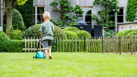 CUXIN DCM Frühjahrs Rasenpflege Aktionsplan