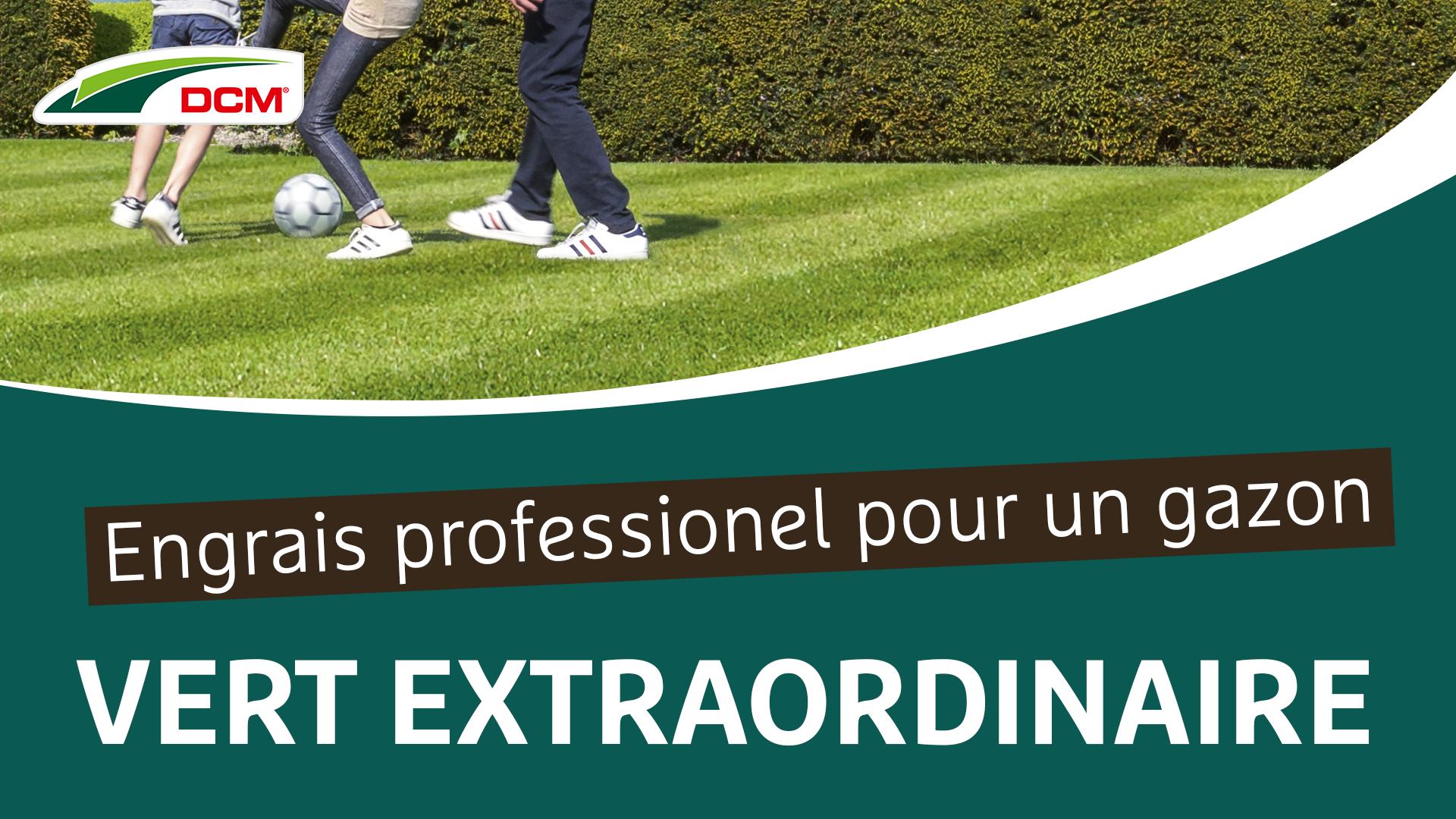 Engrais professionel pour un gazon vert extraordinaire - DCM Vital-Green Gazon