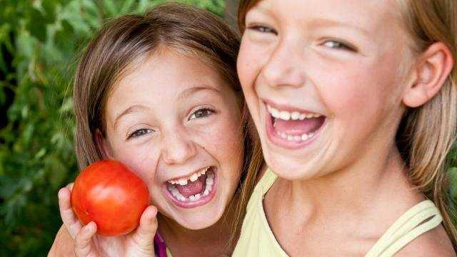Hoe tomaten telen?