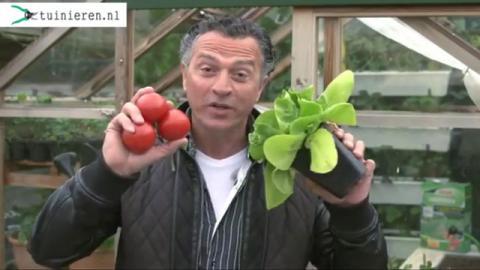 Moestuin bemesten: groenten, fruit en kruiden