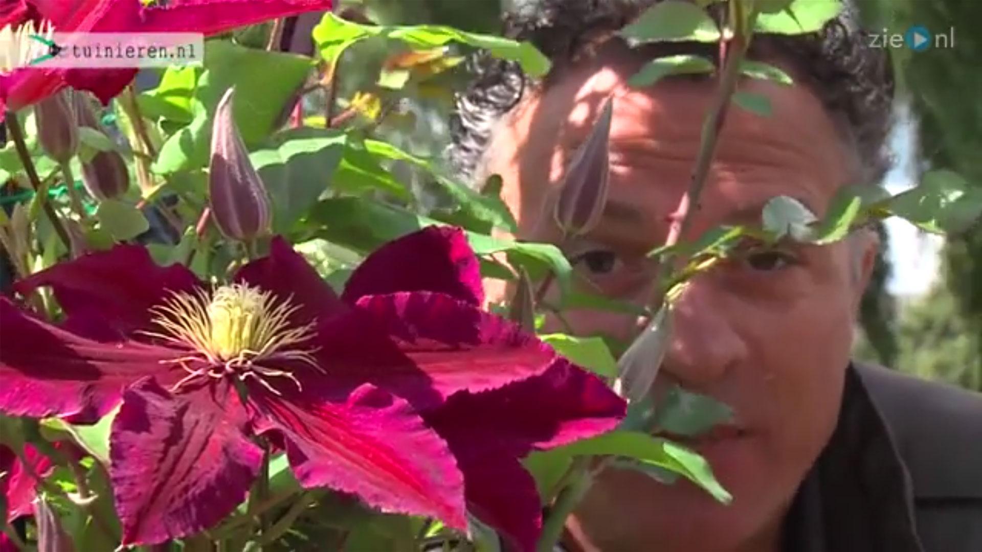 Tuin bemesten: wanneer en hoe?