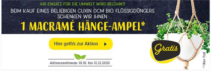 banner-aktion