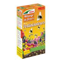Mélange de fleurs Pollinisateurs DCM