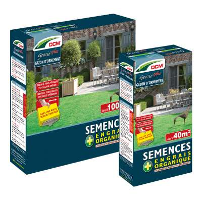 Semences Grazio® plus DCM