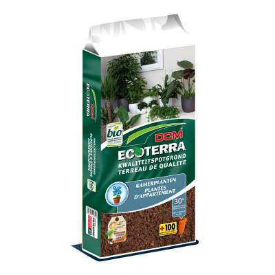 DCM Ecoterra® Kamerplanten