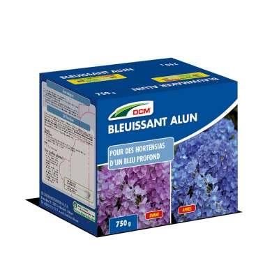 Bleuissant Hortensias - Alun DCM