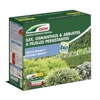 Engrais Ilex, Osmanthus & Arbustes à feuilles persistantes DCM