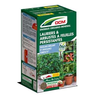 Engrais Lauriers & Arbustes à feuilles persistantes DCM