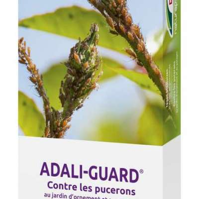 DCM Adali-Guard®